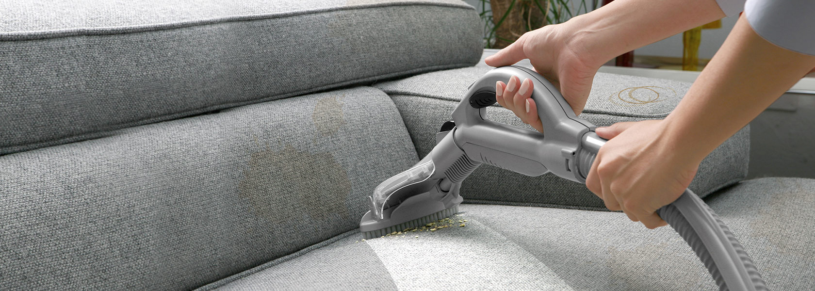 Sofa / Chair Cleaning